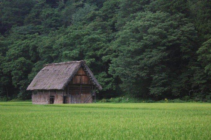 田んぼのなかの家