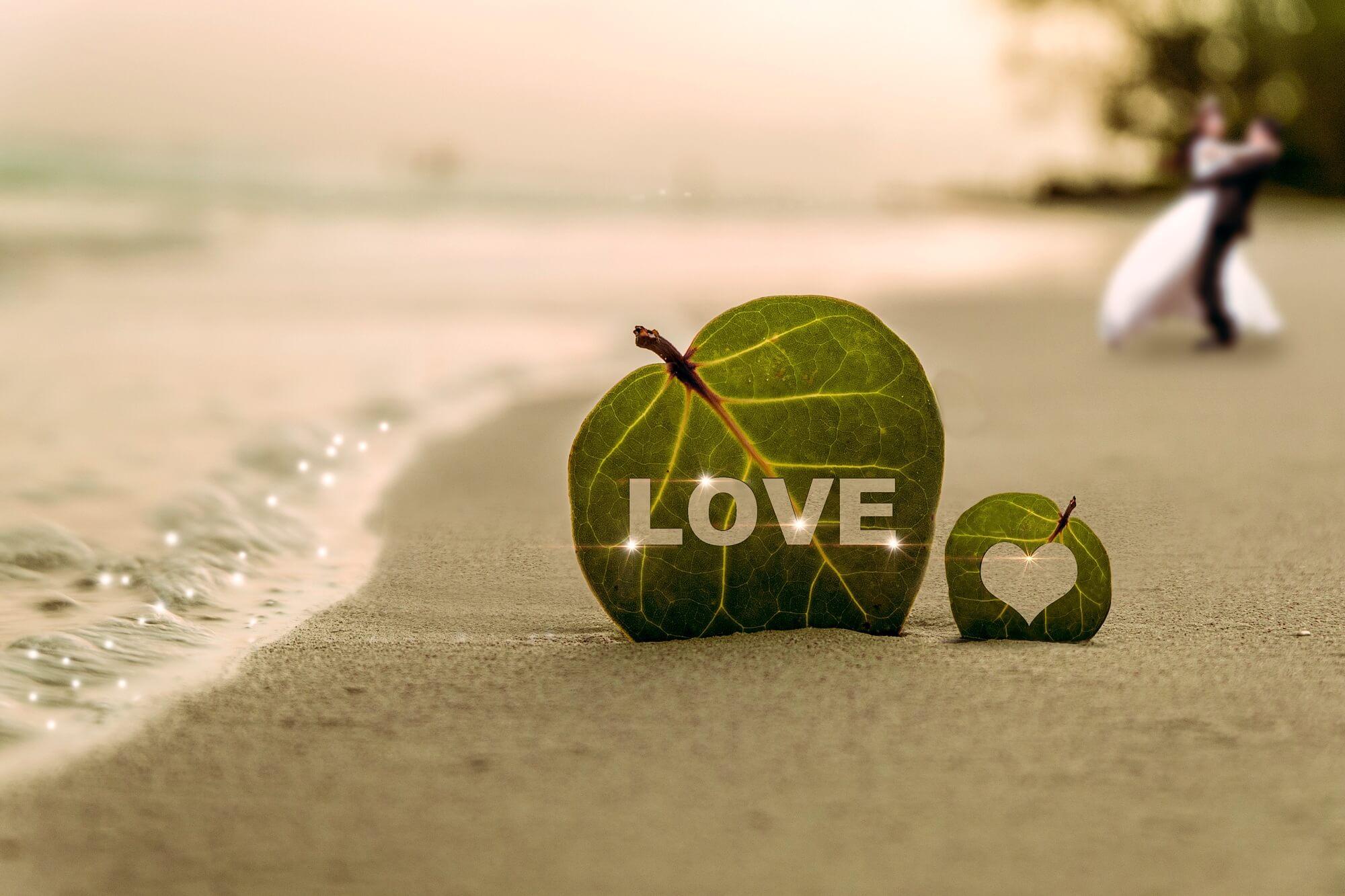 愛の葉っぱ