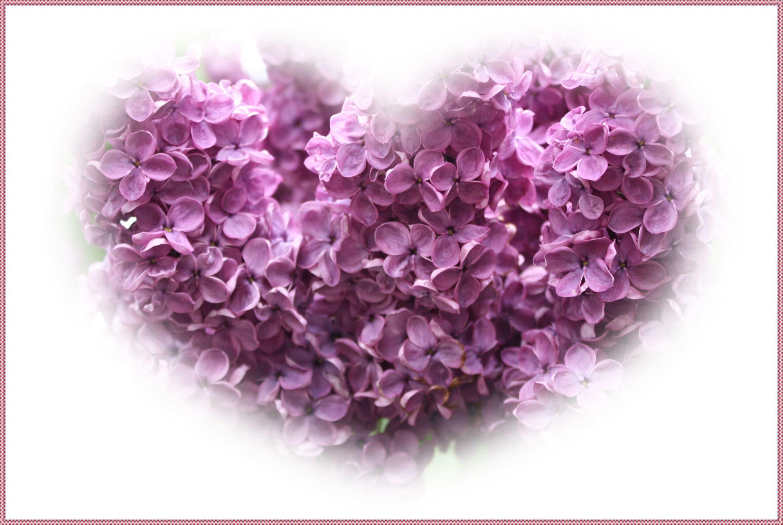 花々でできたハート
