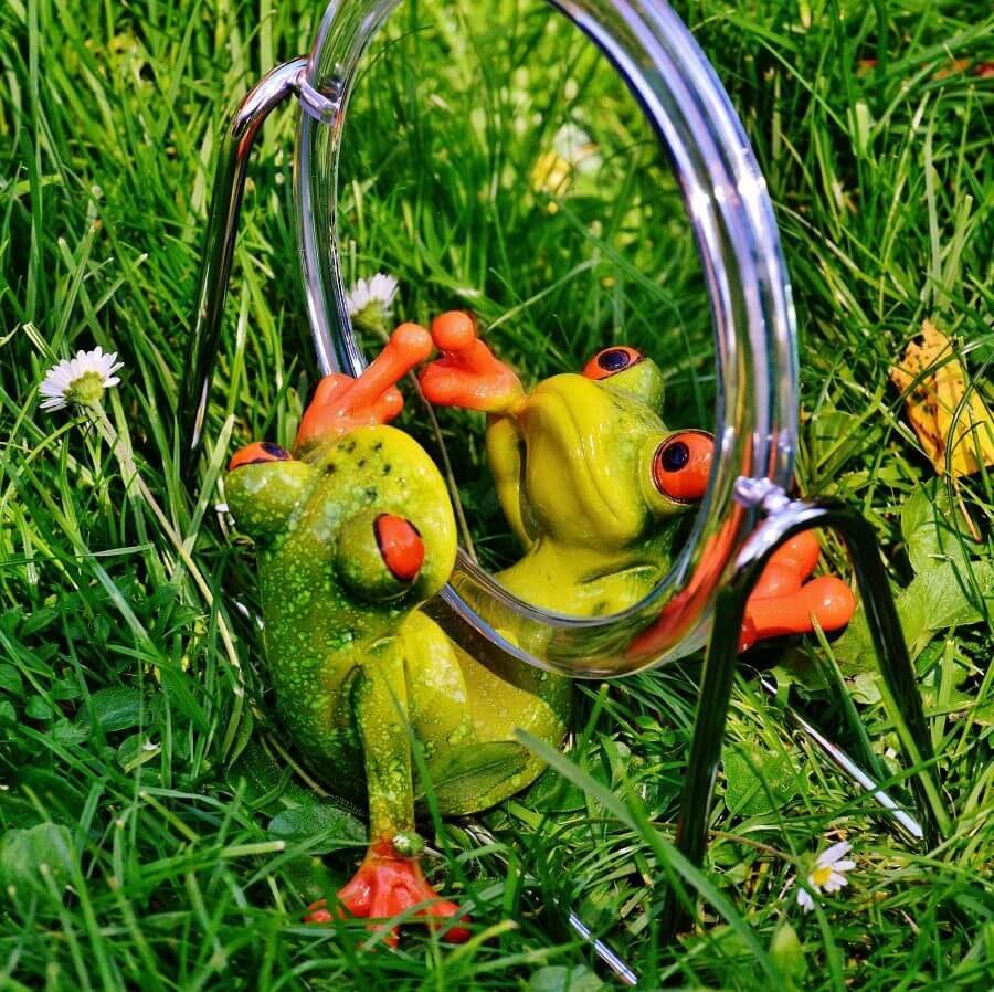 笑顔で鏡を見る蛙