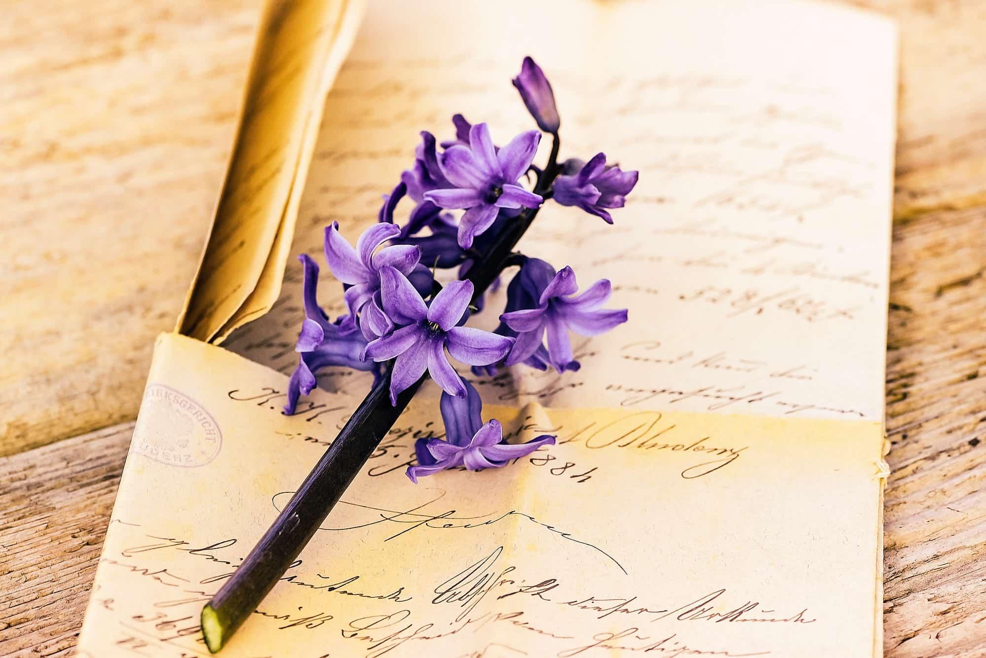 紫のヒヤシンスを添えた手紙