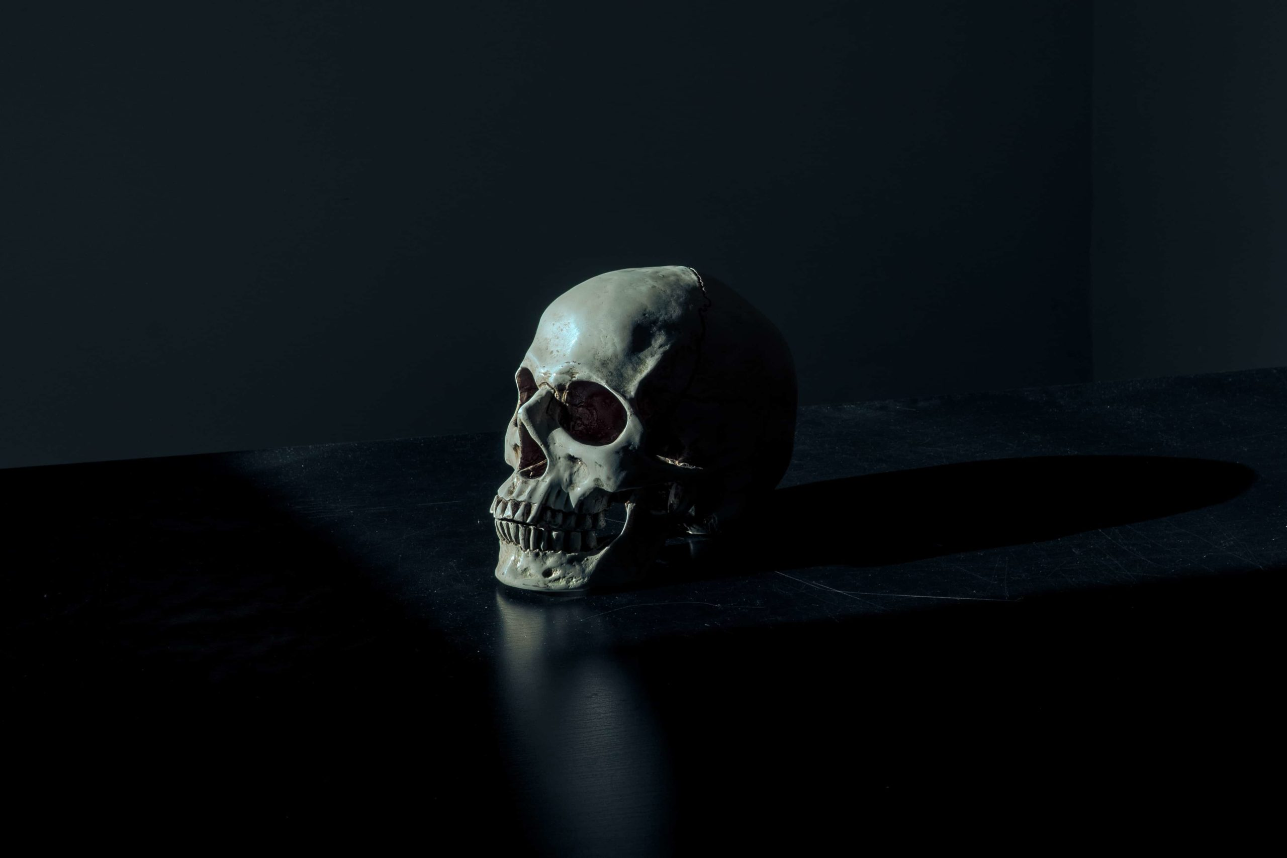 暗闇に浮かぶひとつの骸骨