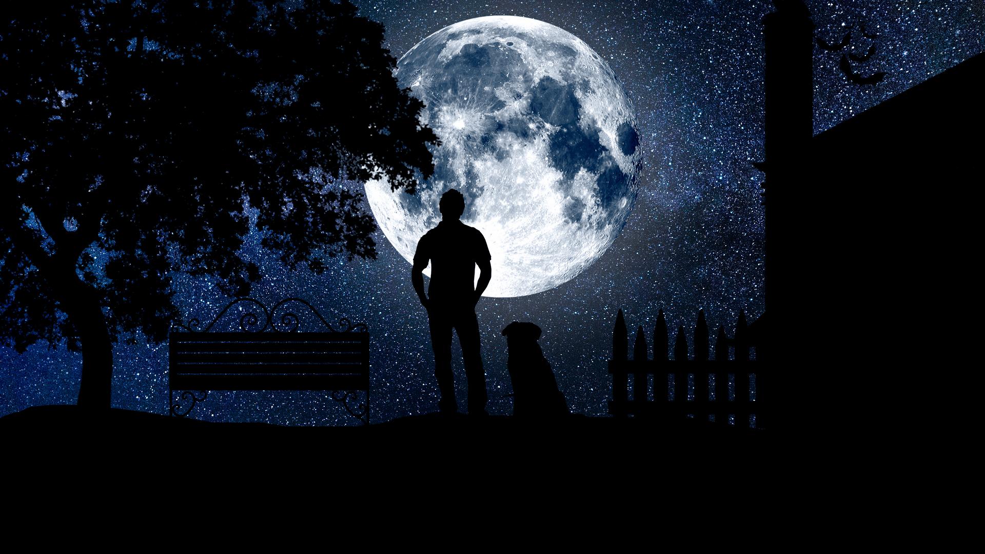 満月を眺める男性と犬