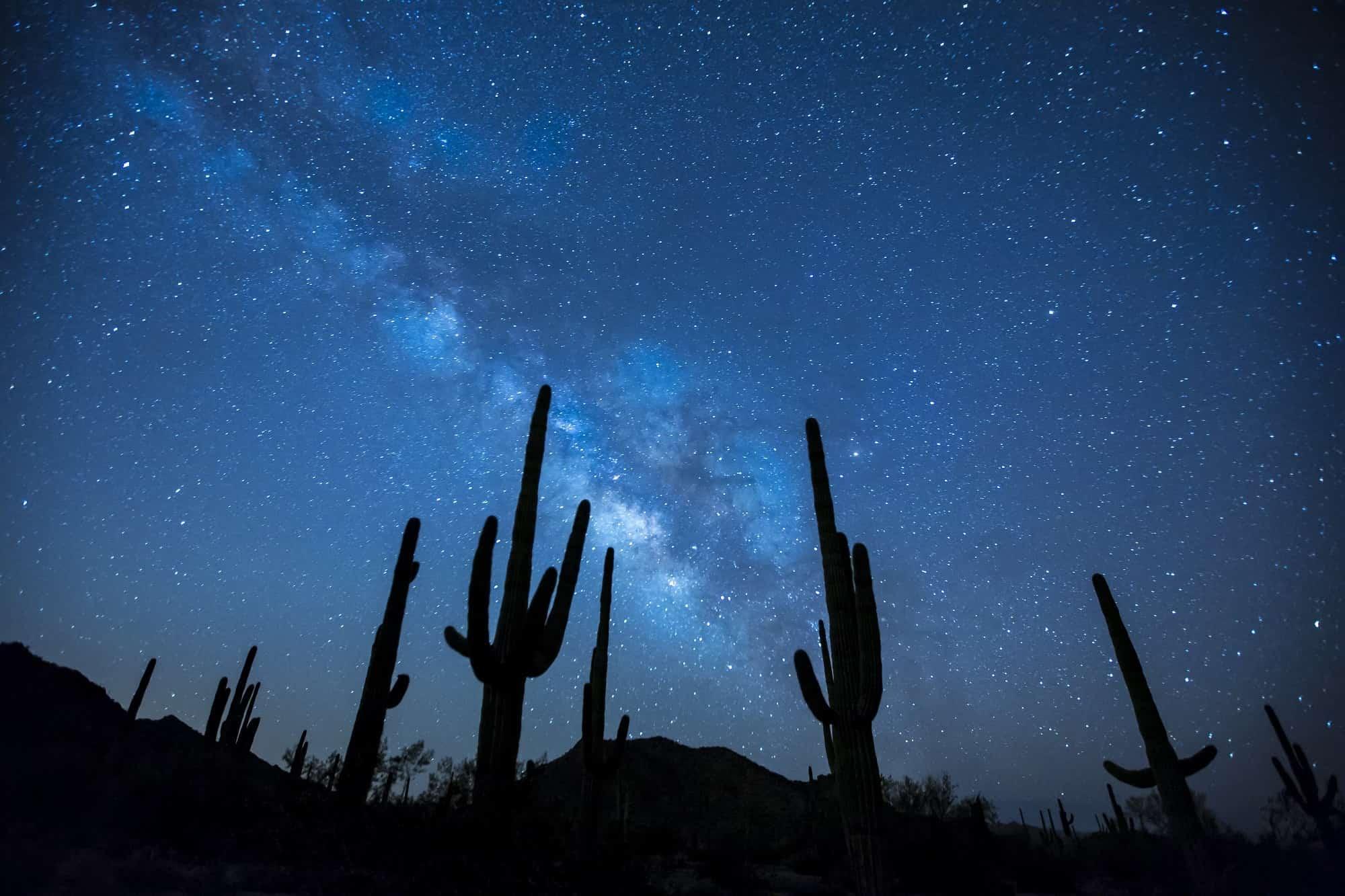 砂漠のサボテンと天の川