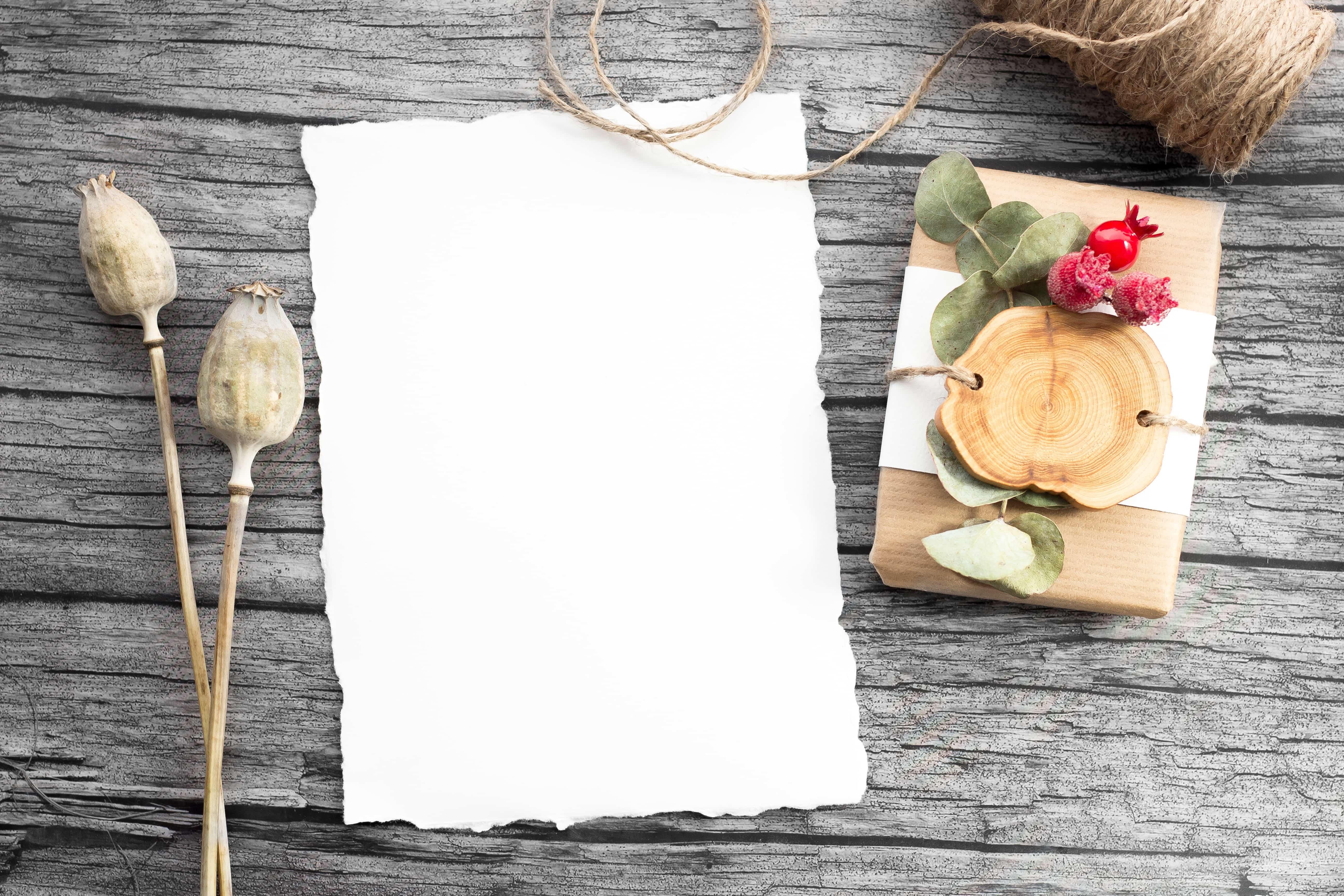 木の上の白い紙